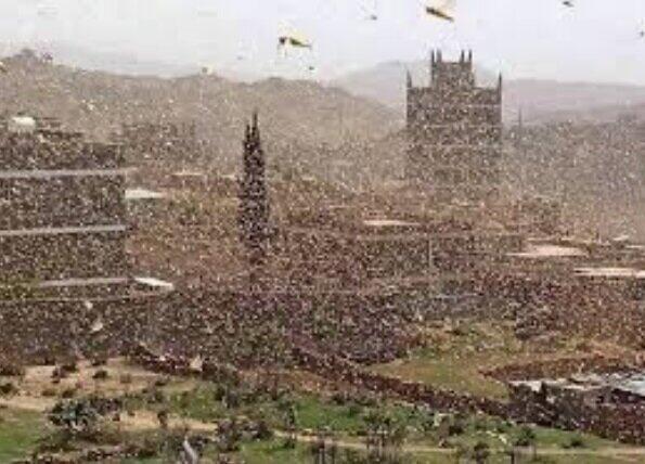 都会の空を覆うサバクトビバッタの群れ(FAOの公式サイトより)