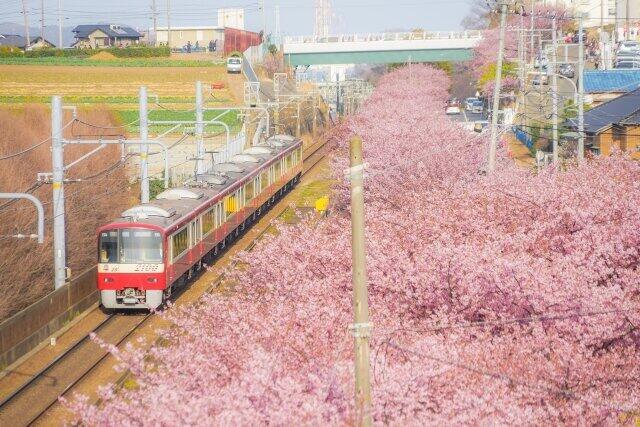 牧野氏は「自然が近く、都心にも1本で行ける街の物件は価値が上がるだろう」と話す(神奈川県三浦市の三浦海岸付近)