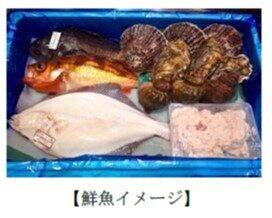 朝どれの鮮魚が届く