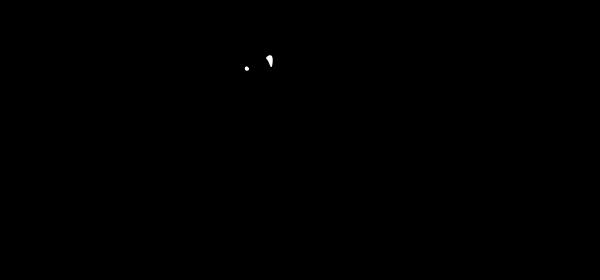Anaguma