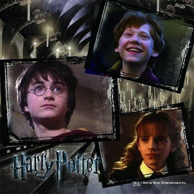 HARRY POTTER characters, names and related indicia are trademarks of and (C) Warner Bros. Entertainment Inc. Harry Potter Publishing Rights (C) JKR. (s14)