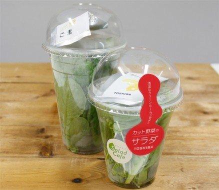 農薬不使用の野菜をつかったサラダ。計6種展開。