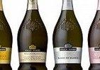 「プロセッコ」など4種を発売 サントリーワインインターナショナル