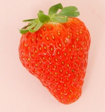 今年は100年に1度のイチゴ・イヤー!