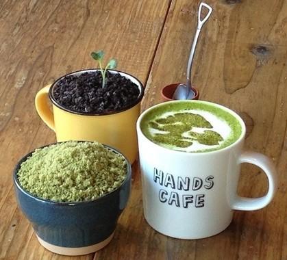 盆栽カフェメニュー。左から、「苔 -BONSAI- パフェ」、「BONSAIティラミス ~芽吹き~」、「抹茶ラテ -BONSAI-」