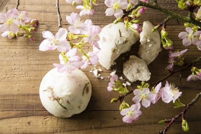 桜の季節にふさわしい、ほんのり桜色