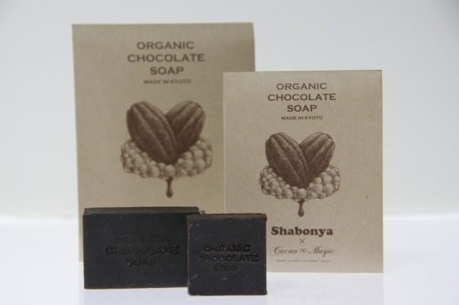 チョコレートのような見た目