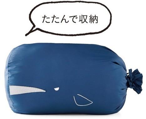 「マッコウクジラケース」
