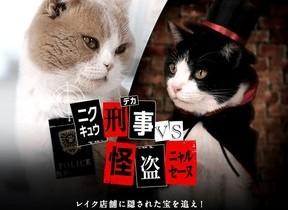 ネコ刑事とネコ怪盗の超かわいい対決 「緑のカンバン」に隠された宝を探せ