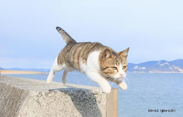写真家・五十嵐健太さんの作品
