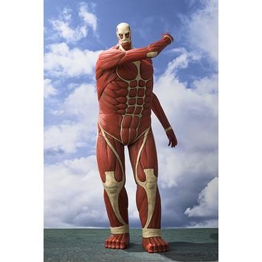 60mの超大型巨人の約100分の1スケール