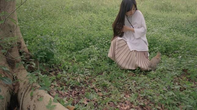 初夏の森林、ウサギをカメラで撮ろうとするが逃げられてしまう