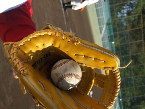 栄冠はコメに輝く 栄冠はコメに輝く  夏の高校野球、大正7年の「中止理由」が話題 教科書にも載っ