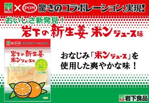 「岩下の新生姜 ポンジュース味」