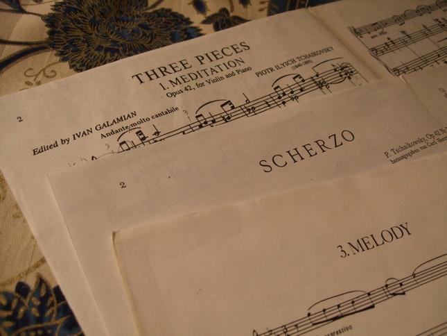 『懐かしい土地の思い出』は、3曲からなっている