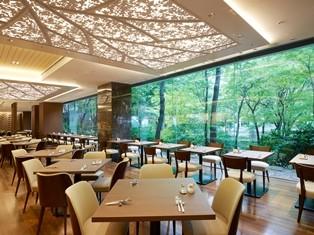 広い窓から外に広がる樹木のパノラマとスタイリッシュで爽やかな温かみのある空間