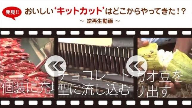 カカオ栽培からキットカットが手元に届くまでを逆再生でたどる動画