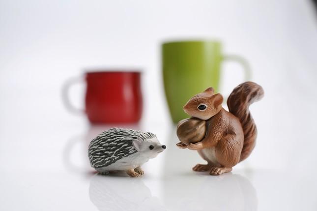 「リス&ハリネズミ」