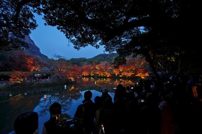 歴史ある庭園の紅葉が夜も楽しめる