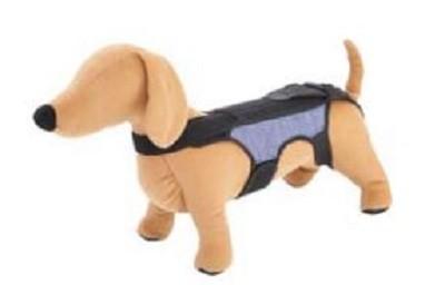 足腰の弱った愛犬の立ち上がりや歩行をサポート