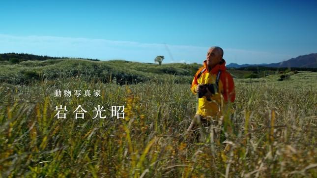岩合さんの写真は、ナショナルジオグラフィック誌の表紙を2度飾るなど、全世界で高く評価されている