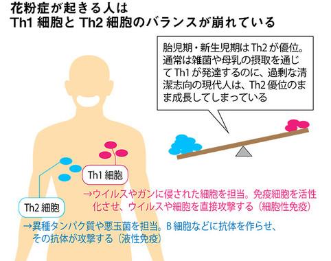 花粉症患者はヘルパーT細胞のTh1とTh2のバランスが崩れている