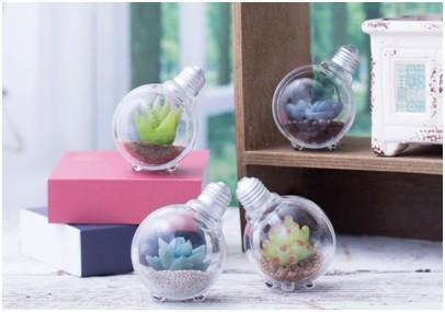 「豆電球テラリウム」全4種