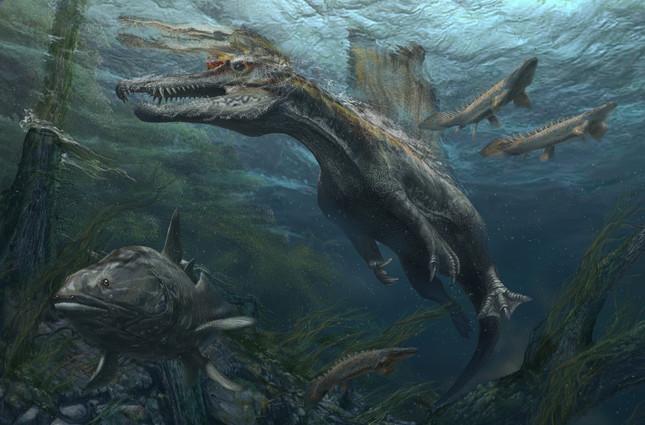 スピノサウルス復元画(C)Davide Bonadonna