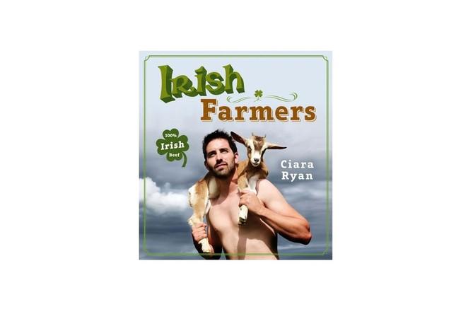 「Irish Farmers」表紙。筆者もKindle版を購入し、ありがたく拝見した