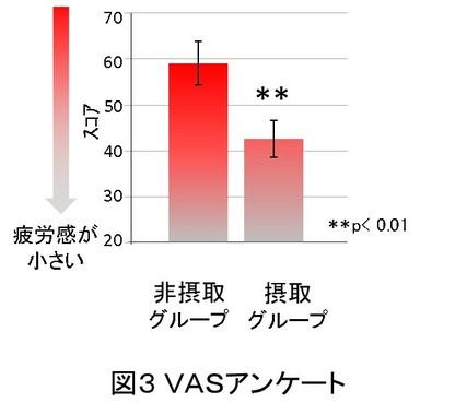 今回のテストにおける。被験者の疲労感VASアンケートの結果