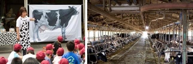 自ら運営する「酪農教育ファーム」で、子どもたちに酪農を通じて命の大切さを教える清水ほづみさん