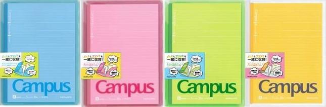 教科ごとに色分けが可能