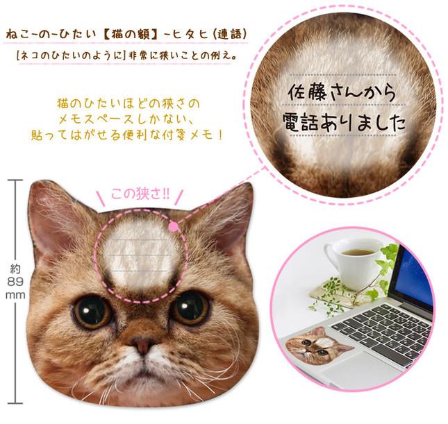書けるスペースは猫の額ほどしかない