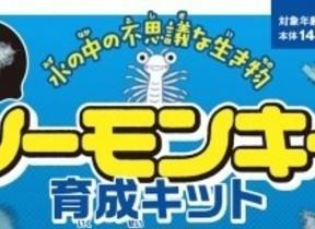 昭和時代に大ブーム「シーモンキー」育成キット発売 宝島社から