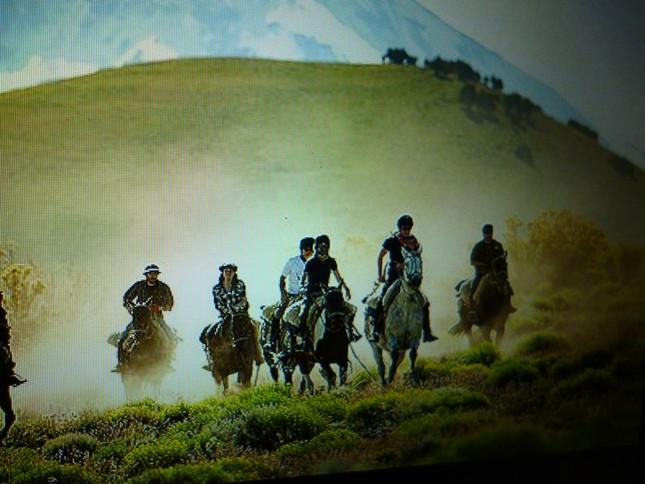 ガウチョのいるアルゼンチンの草原地帯の風景