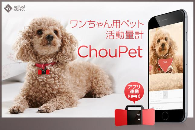 ワンちゃん用ペット活動量計「ChouPet」