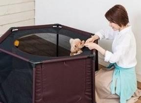 愛犬のプレイスペース、屋内・屋外でも使えて洗える! コンビから