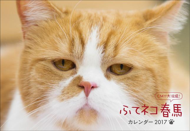 「ふてネコ春馬カレンダー2017」