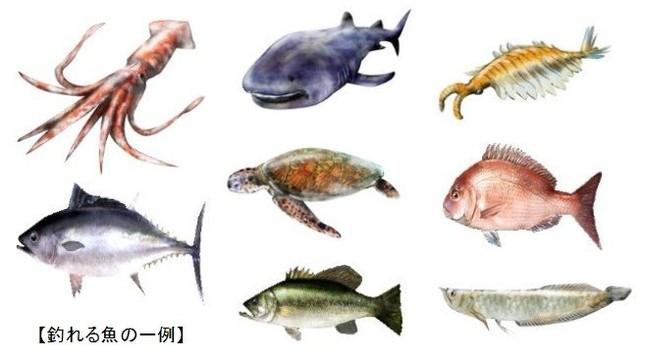 おなじみの魚からレア魚まで130種以上の獲物が待っている!