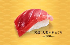 かっぱ寿司、「天然!大間の本まぐろ」を大盤振る舞い 1月9日限定で