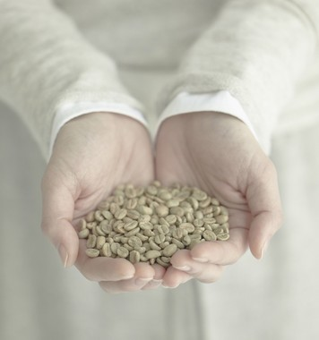 厳しい品質管理と安全基準で選定した世界中の良質なスペシャルティ豆を季節ごとの4つのテーマにあわせて毎月お届け