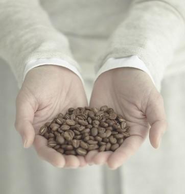 焙煎プロファイルは豆の特長にあわせて1種類の豆に焙煎度の異なる2~3パターンを作成
