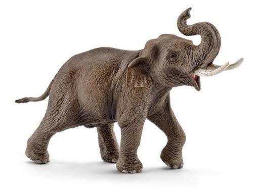 ワイルドライフシリーズの「インド象(オス)」