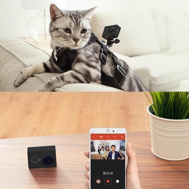スマートフォン/タブレットと接続すればビデオストリーミングが可能