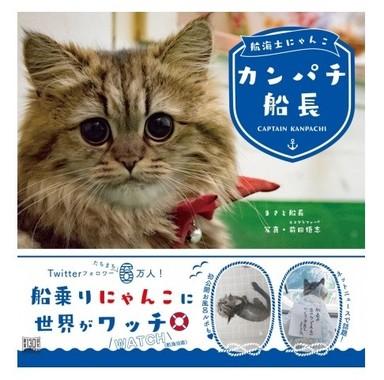 内航船で暮らす猫
