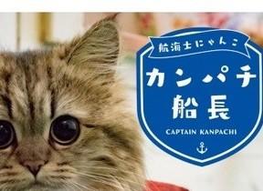 フォロワー6万人超えの、船で暮らす猫の写真集