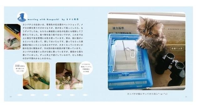 子猫時代の写真も掲載