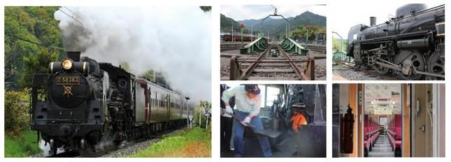 都心で一番近い蒸気機関車に乗って、春の魅力満載の秩父路を堪能