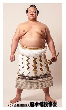 日本相撲協会の公式サイトより。
