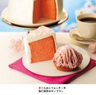 左から「さくらのシフォンケーキ」「桜と抹茶のモンブラン」